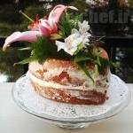 بِیر کیک – Bare cake